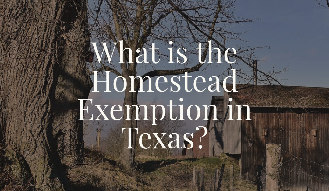 What is the Homestead Exemption in Texas?